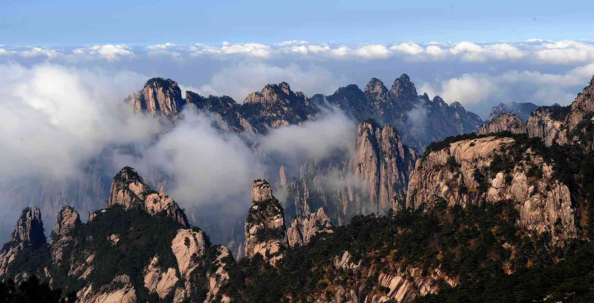 montagne_jaune_thé_Huang_Shan_Mao_Feng
