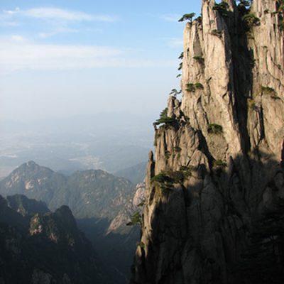 thé_vert_chine_Huang_Shan_Mao_Feng_scene