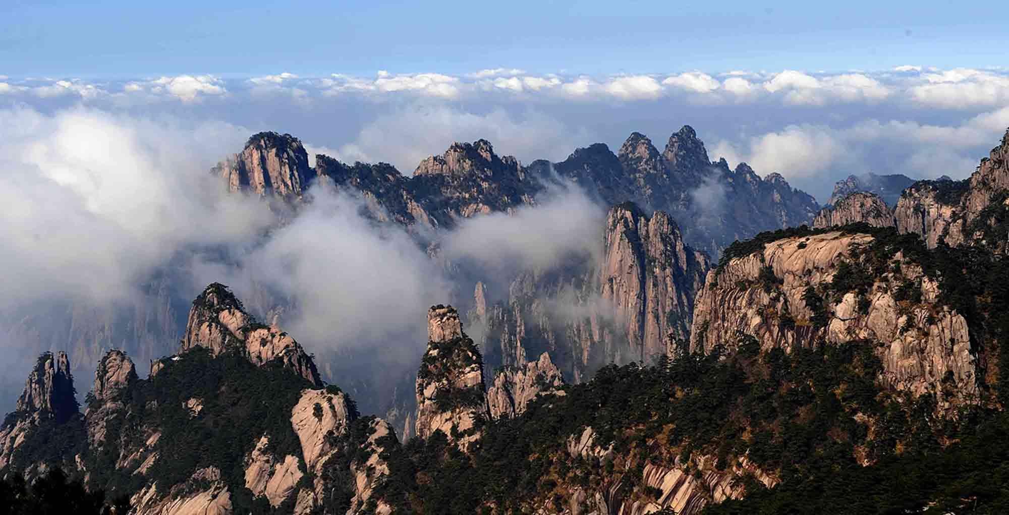 montagne_jaune_thé_Huang_Shan_Mao_Feng