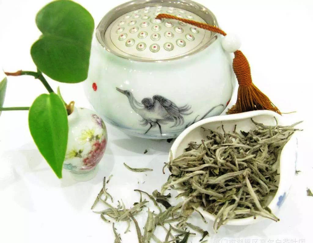 whie_tea_thé_blanc