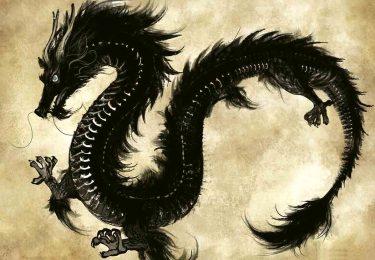 thé_oolong_tea_black_dragon_noir